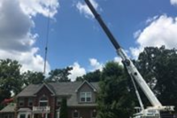 tree removal requiring crane off roof
