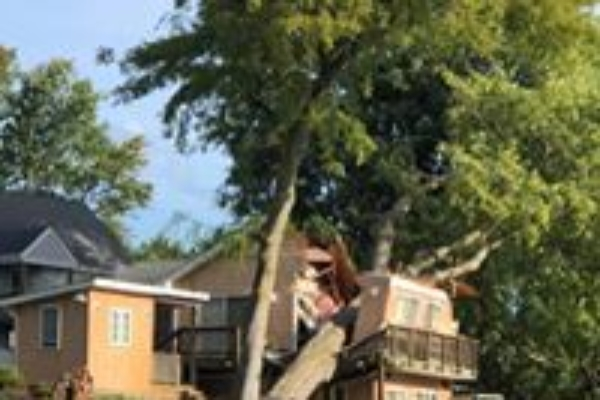 storm damage tree on roof removal